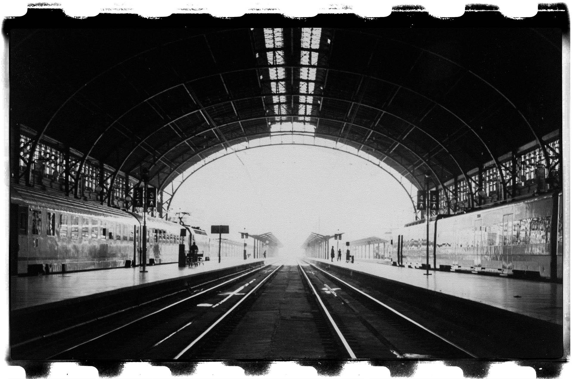 Estación del Norte con trenes a los lados